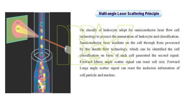 multi-angle laser scatter