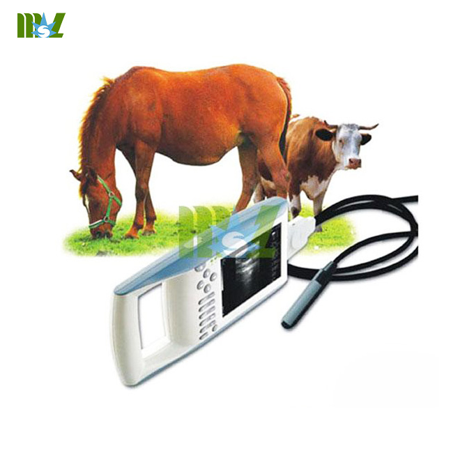 veterinary ultrasound scanners