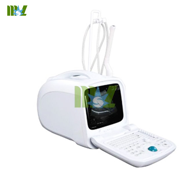 Portable Medical Ultrasonic Scanner