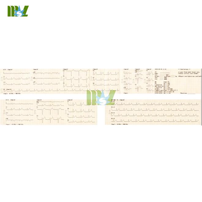 MSLEC13-C