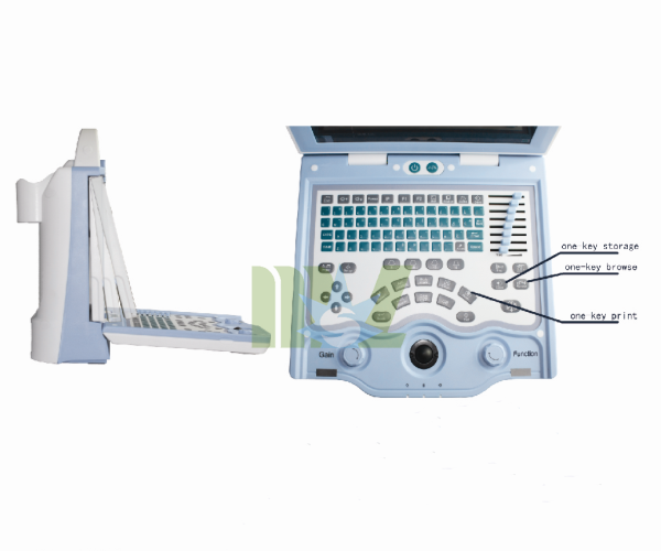 veterinary rotatable LED desktop ultrasound scanner MSLVU18-4