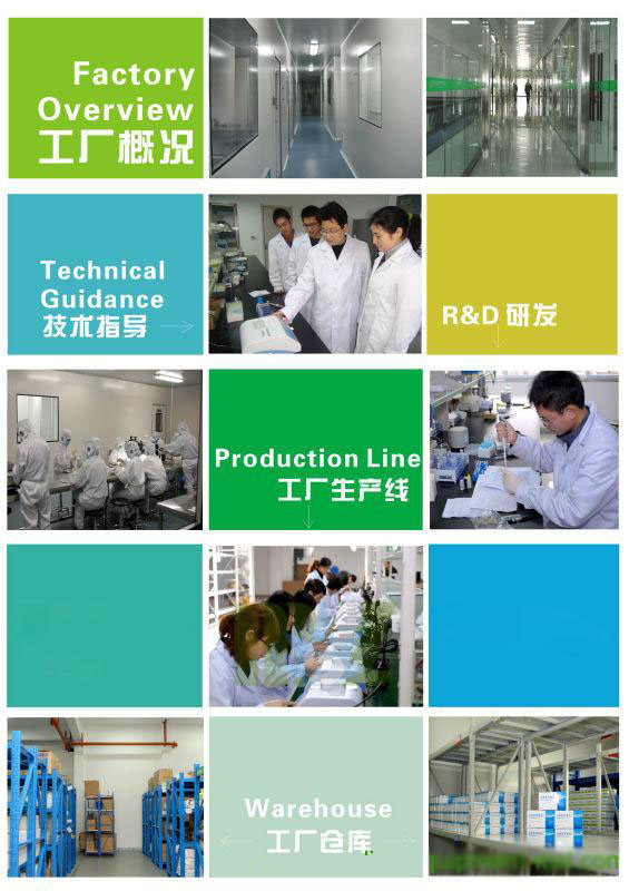 Electrolyte Analyzer MSLEA01 factory