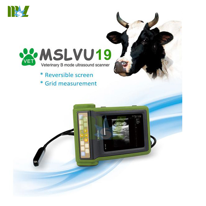 Portable veterinary reversible screen ultrasound machine