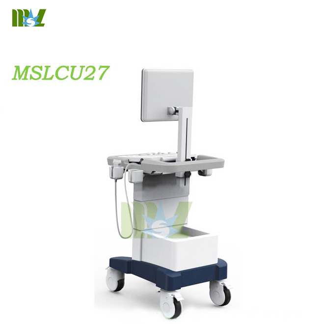 Trolley ultrasonic diagnostic imaging system