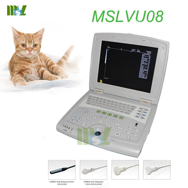 best laptop ultrasound veterinary MSLVU08