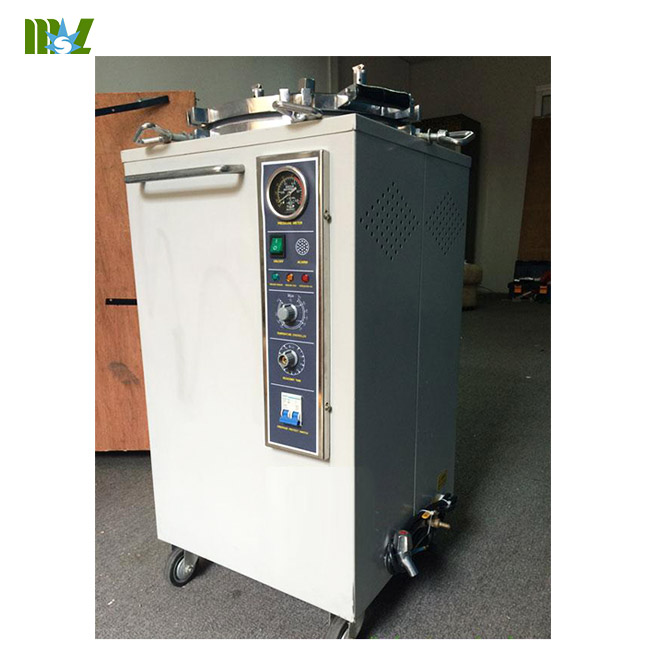 steam sterilizer price-MSLSS02 for sale