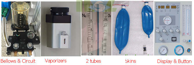 best New Anesthesia Ventilator for sale-MSLGA10