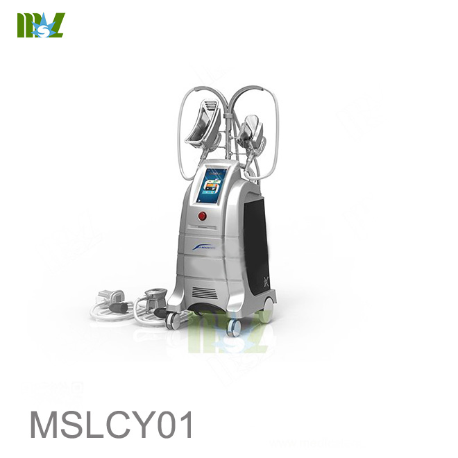 MSL Fat freezing machine MSLCY01