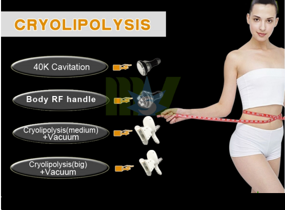 Cheap Cryolipolysis cavitation laser slimming machine MSLCY02