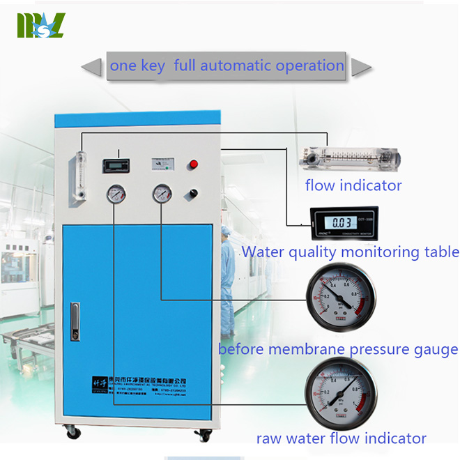 Advanced Cheap energy saving ultra pure water machine MSL50L