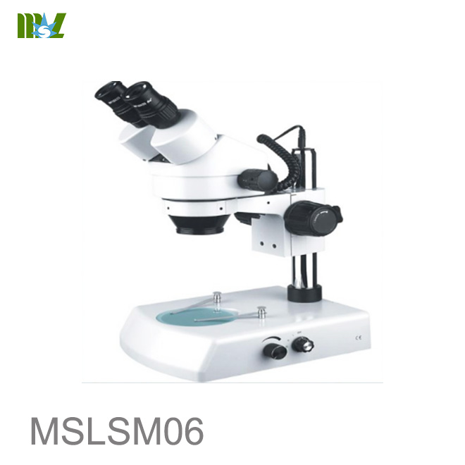 New Stereo microscope with digital camera