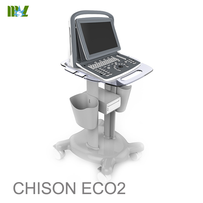 Musculoskeletal ultrasound course chison eco 2