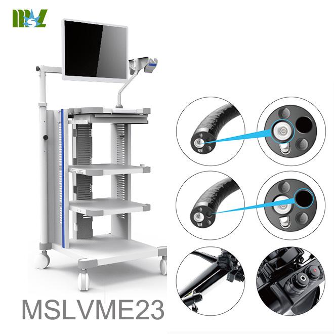 endoscopy cost MSLVME23