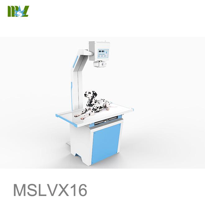 veterinary x ray