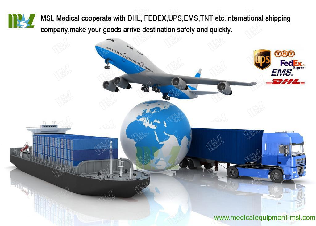 MSL International shipping