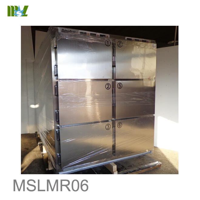 Six Body Refrigerator MSLMR06