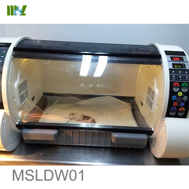 puppy incubator