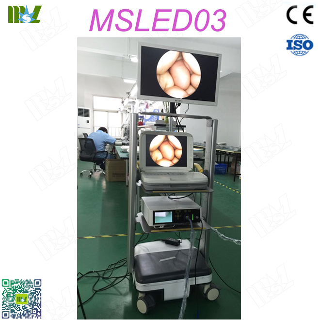 cystoscopy MSLED03