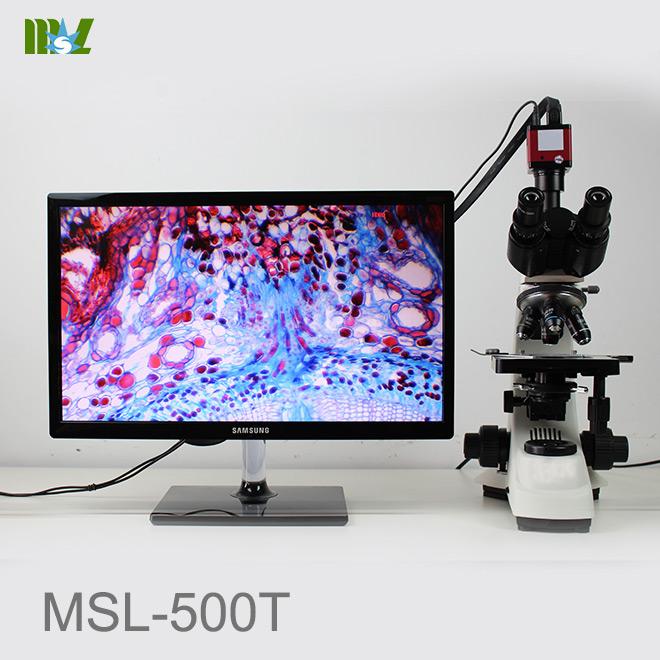 nosepiece microscope
