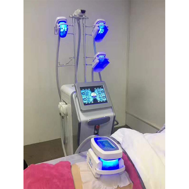 Cryolipolysis Body Contouring System Machine MSLCY13 5S-5