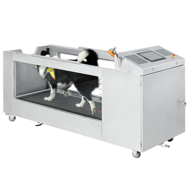 Hydrotherapy-Treadmill-MSLC880