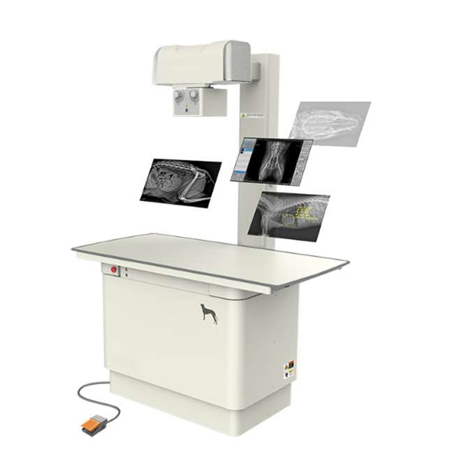 digital-radiography-system-MSLVX28-2